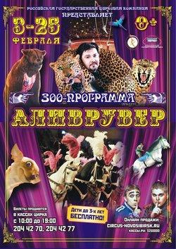 Цирк «Аливрувер»