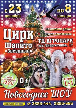 Новогоднее шоу цирка-шапито «Звездный»