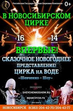 Сказочное новогоднее представление. Цирк на воде